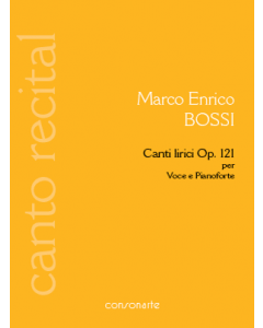 Bossi C803 Cover Small